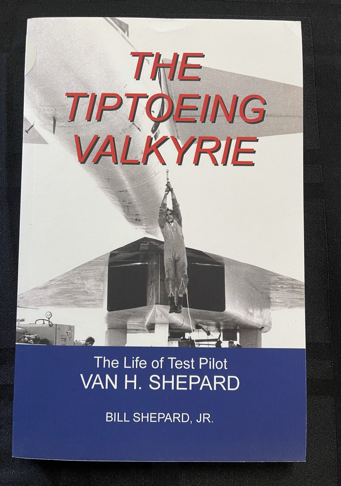 "Featured image for ""Tiptoeing Valkyrie, The"""